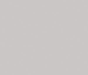 LL21 – Nebbia