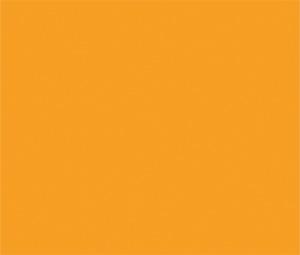 LL31 – Girasole